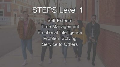 STEPS Level 1